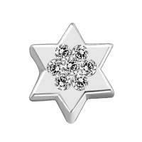 Clear Crystal Star Of David Floating Charms For Living Memory Locket