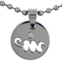 Aquarius Horoscope Zodiac Sign Stainless Steel Medallion Necklace
