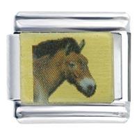 Mongolian Horse Italian Charm