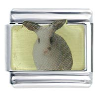 Rabbit Spring Italian Charms