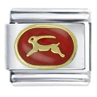 Capricorn Red Bith Date Italian Charm Bracelet
