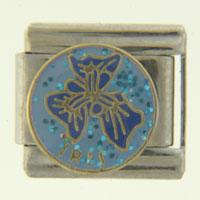 Iris February Jewelry Italian Charm