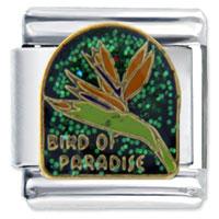 Bird Paradise Italian Charm