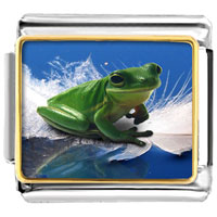 Italian Charms - surfing frog animal photo italian charms bracelet link Image.