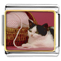Italian Charms - cat with yarn animal photo italian charms bracelet link Image.