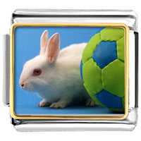 Italian Charms - soccer bunny rabbit animal photo sports italian charms bracelet link photo italian charm Image.