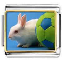 Italian Charms - soccer bunny rabbit animal photo sports italian charms bracelet link photo italian charm Image.