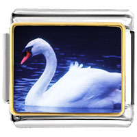 Italian Charms - animal photo swimming swan italian charms bracelet link photo italian charm Image.