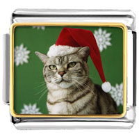 Italian Charms - santa claus christmas gift cat looking good animal photo italian charms bracelet link Image.