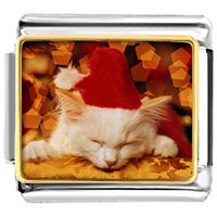 Italian Charms - santa claus christmas gift sleeping kitten animal photo italian charms bracelet link Image.
