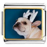 Italian Charms - dog christmas rudolph reindeer animals christmas italian charms bracelet link photo italian charm Image.