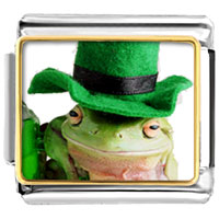 Items from KS - animal photo st.  patricks day frog italian charms bracelet link photo italian charm Image.
