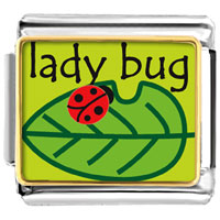 Animal Phot Lady Bug On Leaf Italian Charms Bracelet Link