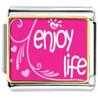Enjoy Life Hearts Valentine Italian Charms Bracelet Link