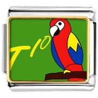 Italian Charms - animal photo tio speaking parrot italian charm bracelet bracelet link photo italian charm Image.