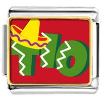 Italian Charms - tio cactus desert italian charm bracelet bracelet link photo italian charm Image.