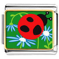 Curious Ladybug Animal Photo Italian Charms Bracelet Link