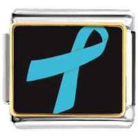 Items from KS - light blue ribbon awareness italian charms bracelet link photo italian charm Image.