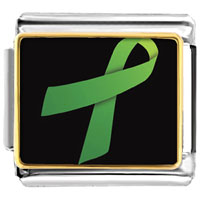 Items from KS - light green ribbon awareness italian charms bracelet link photo italian charm Image.