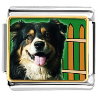 Italian Charms - golden italian charm bracelet plated travel australian shepherd photo photo italian charm Image.