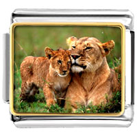 Italian Charms - golden italian charm bracelet plated animal cub photo photo italian charm Image.