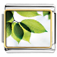 Italian Charms - branch green leaves photo charm italian photo italian charm Image.