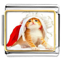 Italian Charms - cute cat pretty mantle photo charm italian photo italian charm Image.