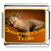 "Items from KS - cat sleeping "" dreams come true""  photo charm italian photo italian charm Image."