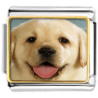 Items from KS - cute golden retriever tongue hanging photo italian charm Image.