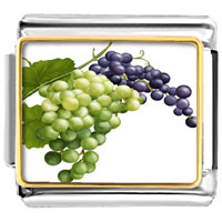 Italian Charms - anti cancer superfruits grapes photo charm italian photo italian charm Image.