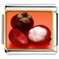 Italian Charms - anti cancer superfruits mangosteen photo charm italian photo italian charm Image.