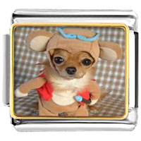 - cute puppy dog photo italian charm Image.