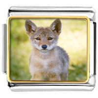 Italian Charms - 18 k gold cute pet love photo hand painted italian charm photo italian charm Image.