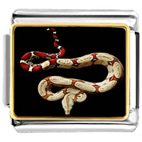 - chinese zodiac snake photo charm photo italian charm Image.