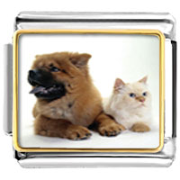 Italian Charms - relaxing pet pals animal photo italian charms bracelet link Image.