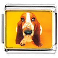 Italian Charms - basset hound dog animal photo italian charms bracelet link Image.