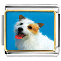 Italian Charms - australian terrier animal photo italian charms bracelet link Image.