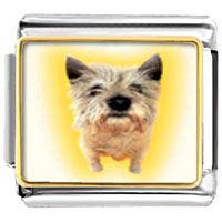 Italian Charms - norwich terrier animal photo italian charms bracelet link Image.