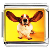 Italian Charms - basset hound big ears animal photo italian charms bracelet link Image.