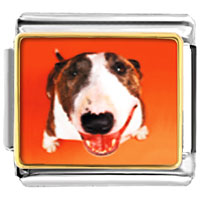 Italian Charms - fox terrier animal photo italian charms bracelet link Image.
