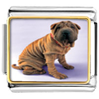 Italian Charms - shar pei dog animal photo italian charms bracelet link Image.
