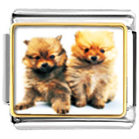 Italian Charms - chow twins animal photo italian charms bracelet link Image.