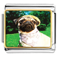 Italian Charms - golfing animal photo italian charms bracelet link Image.