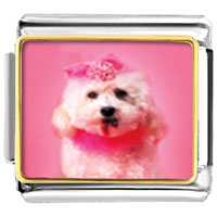 Italian Charms - pink poodle animal photo italian charms bracelet link Image.