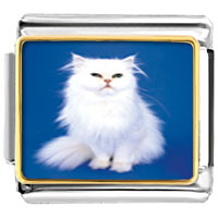 Italian Charms - white fluffy cat animal photo italian charms bracelet link Image.