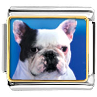 Italian Charms - bull dog animal photo italian charms bracelet link Image.