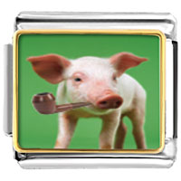 Italian Charms - animal photo smoking pig italian charms bracelet link photo italian charm Image.