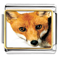 Items from KS - red fox animal photo italian charms bracelet link Image.