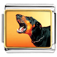 Italian Charms - barking dog animal photo italian charms bracelet link Image.