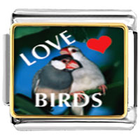 Italian Charms - love birds photo italian charm bracelet Image.